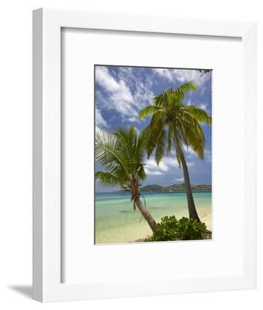 Beach and Palm Trees, Plantation Island Resort, Malolo Lailai Island, Mamanuca Islands, Fiji-David Wall-Framed Photographic Print