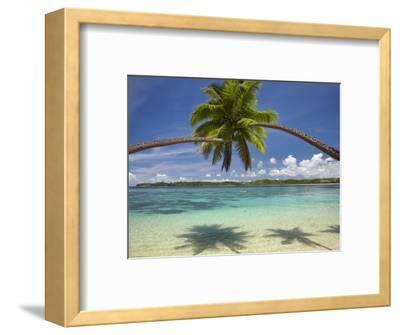 Palm Trees, Shangri-La Fijian Resort, Yanuca Island, Coral Coast, Viti Levu, Fiji, South Pacific-David Wall-Framed Premium Photographic Print