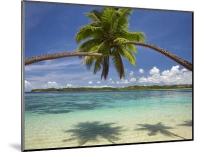 Palm Trees, Shangri-La Fijian Resort, Yanuca Island, Coral Coast, Viti Levu, Fiji, South Pacific-David Wall-Mounted Premium Photographic Print