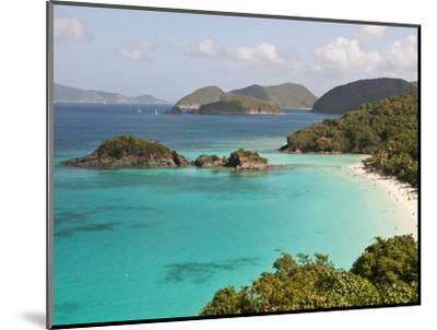 Underwater Snorkeling Trail, St John, United States Virgin Islands, USA, US Virgin Islands-Trish Drury-Mounted Photographic Print