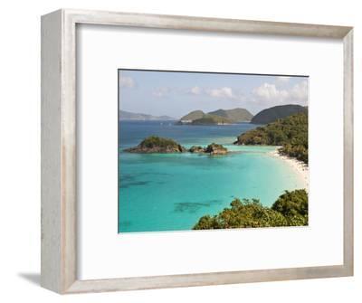 Underwater Snorkeling Trail, St John, United States Virgin Islands, USA, US Virgin Islands-Trish Drury-Framed Photographic Print