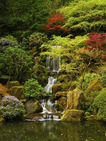 Spring, Portland Japanese Garden, Portland, Oregon, USA-Michel Hersen-Photographic Print