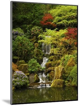 Spring, Portland Japanese Garden, Portland, Oregon, USA-Michel Hersen-Mounted Photographic Print