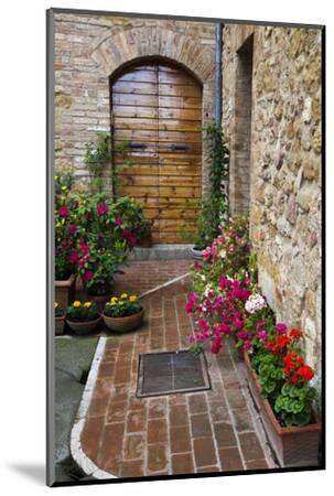 Doorway with Flowers, Pienza, Tuscany, Italy-Terry Eggers-Mounted Premium Photographic Print