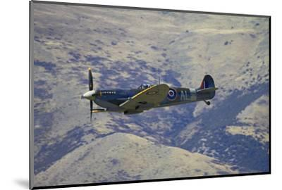Supermarine Spitfire, British and Allied WWII War Plane, South Island, New Zealand-David Wall-Mounted Photographic Print