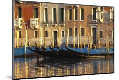 Gondolas Along the Grand Canal in Venice, Italy-David Noyes-Mounted Photographic Print