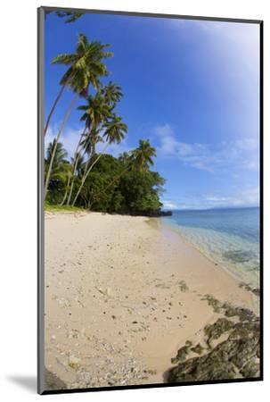 Prince Charles Beach, Taveuni, Fiji-Douglas Peebles-Mounted Premium Photographic Print