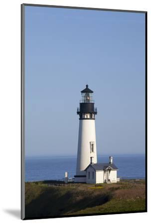 Yaquina Head Lighthouse, 1873, Newport, Oregon, USA-Jamie & Judy Wild-Mounted Photographic Print