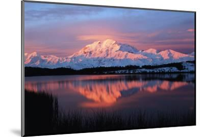 Lake with Mt McKinley, Denali National Park and Preserve, Alaska, USA-Hugh Rose-Mounted Photographic Print