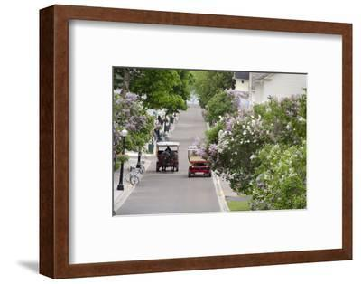 Lilac Lined Street with Horse Carriage, Mackinac Island, Michigan, USA-Cindy Miller Hopkins-Framed Photographic Print