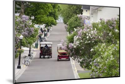 Lilac Lined Street with Horse Carriage, Mackinac Island, Michigan, USA-Cindy Miller Hopkins-Mounted Photographic Print