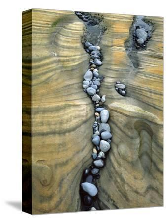 Rocks Caught in Sandstone Formations, Seal Rock Beach, Oregon, USA-Jaynes Gallery-Stretched Canvas Print