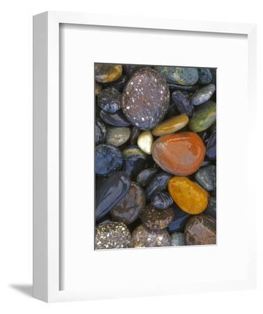 Stones, Lopez Island, Agate Beach County, Washington, USA-Charles Gurche-Framed Photographic Print