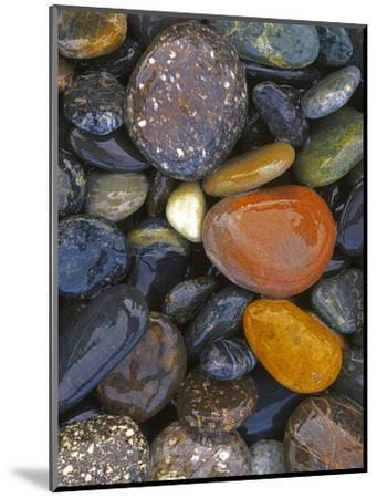 Stones, Lopez Island, Agate Beach County, Washington, USA-Charles Gurche-Mounted Photographic Print