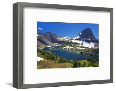 Hanging Gardens, Logan Pass, Glacier National Park, Montana, USA-Charles Gurche-Framed Photographic Print