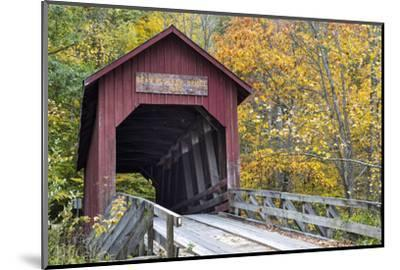 Bean Blossom Covered Bridge in Brown County, Indiana, USA-Chuck Haney-Mounted Premium Photographic Print