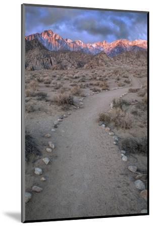 Sunrise on Lone Pine Peak and Mt Whitney, California, USA-Jaynes Gallery-Mounted Photographic Print