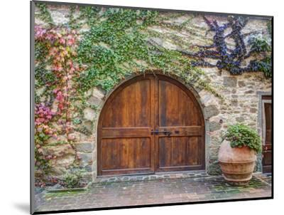Italy, Tuscany, Chianti Region. This Is the Castello D'Albola Estate-Julie Eggers-Mounted Photographic Print
