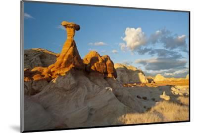 Toadstool Near Kanab, Utah and Page Arizona. Grand Staircase-Escalante-Howie Garber-Mounted Photographic Print