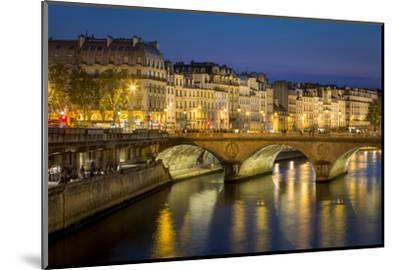 Pont Neuf and the Buildings Along River Seine, Paris France-Brian Jannsen-Mounted Photographic Print