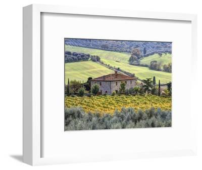Italy, Tuscany. Vineyards and Olive Trees in Autumn by a House-Julie Eggers-Framed Photographic Print