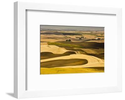 Palouse Fields, from Steptoe Butte, Steptoe Butte Sp, Washington-Michel Hersen-Framed Photographic Print