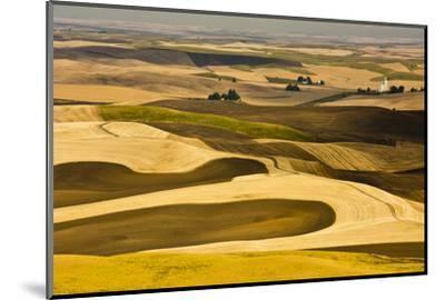 Palouse Fields, from Steptoe Butte, Steptoe Butte Sp, Washington-Michel Hersen-Mounted Photographic Print