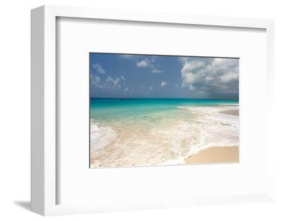 Barbuda Beach, Caribbean-Susan Degginger-Framed Photographic Print