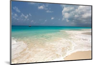 Barbuda Beach, Caribbean-Susan Degginger-Mounted Photographic Print