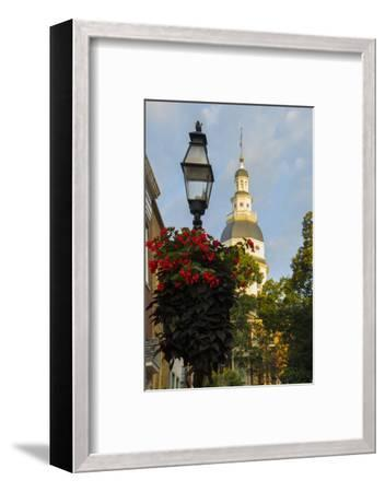 Historic Maryland State House in Annapolis, Maryland-Jerry Ginsberg-Framed Photographic Print