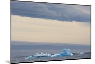 Antarctica. Brown Bluff. Bright Blue Iceberg-Inger Hogstrom-Mounted Photographic Print