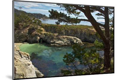 China Cove, Point Lobos State Reserve, Carmel, California, USA-Michel Hersen-Mounted Photographic Print