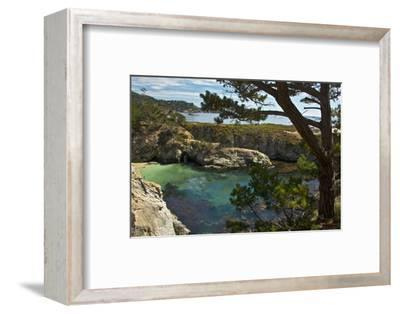 China Cove, Point Lobos State Reserve, Carmel, California, USA-Michel Hersen-Framed Photographic Print