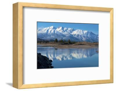 Cinquefoil Mountain Reflects in the Athabasca River, Jasper National Park, Canada-Richard Wright-Framed Photographic Print