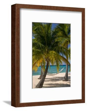 Palm Trees and Hammock at Seven Mile Beach, Grand Cayman, West Indies-Brian Jannsen-Framed Photographic Print