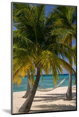 Palm Trees and Hammock at Seven Mile Beach, Grand Cayman, West Indies-Brian Jannsen-Mounted Photographic Print