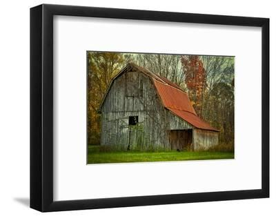 USA, Indiana. Rural Landscape, Vine Covered Barn with Red Roof-Rona Schwarz-Framed Photographic Print