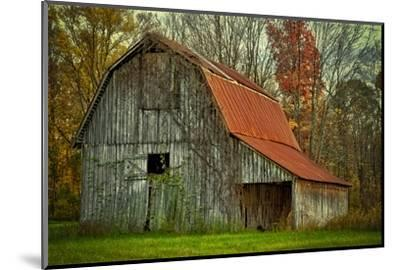 USA, Indiana. Rural Landscape, Vine Covered Barn with Red Roof-Rona Schwarz-Mounted Photographic Print