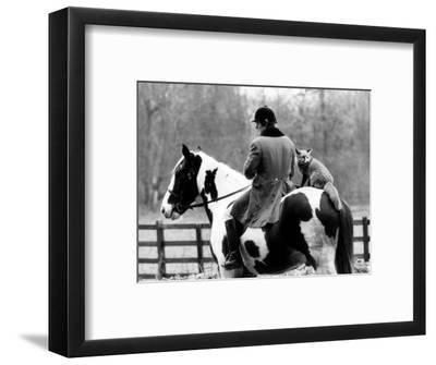A Pet Fox Sits on the Horse of Its Owner--Framed Photographic Print