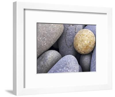 Pebbles in Sandymouth Beach, Cornwall, UK-Nadia Isakova-Framed Photographic Print