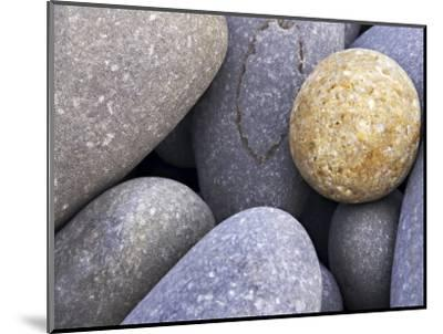 Pebbles in Sandymouth Beach, Cornwall, UK-Nadia Isakova-Mounted Photographic Print