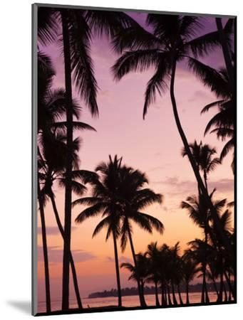 Dominican Republic, Samana Peninsula, Las Terrenas, Playa Las Terrenas Beach-Walter Bibikow-Mounted Photographic Print