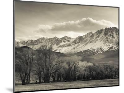 USA, California, Eastern Sierra Nevada Area, Bishop, Landscape of the Pleasant Valey-Walter Bibikow-Mounted Photographic Print