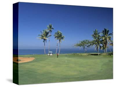 Denarau Golf Course, Danarau, Viti Levu, Fiji-Neil Farrin-Stretched Canvas Print