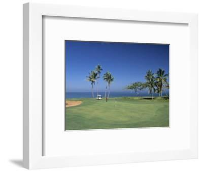 Denarau Golf Course, Danarau, Viti Levu, Fiji-Neil Farrin-Framed Premium Photographic Print