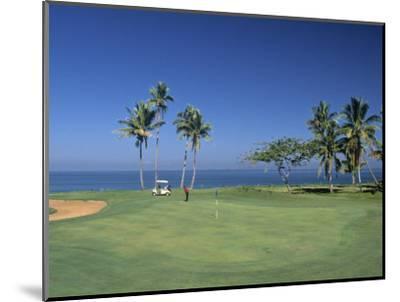 Denarau Golf Course, Danarau, Viti Levu, Fiji-Neil Farrin-Mounted Premium Photographic Print