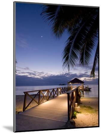Luxury Resort, Malolo Island, Mamanuca Group, Fiji-Michele Falzone-Mounted Premium Photographic Print