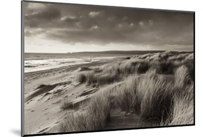 Windswept Sand Dunes on the Beach at Studland Bay, with Views Towards Old Harry Rocks, Dorset-Adam Burton-Mounted Photographic Print