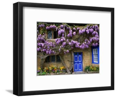 Cottage with Wisteria in Flower, Broadway, United Kingdom-Barbara Van Zanten-Framed Photographic Print