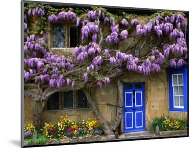 Cottage with Wisteria in Flower, Broadway, United Kingdom-Barbara Van Zanten-Mounted Photographic Print